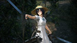 Fes_Mikasa1