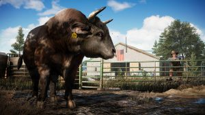 Bull_GOLD_1080p_1495792038_sm