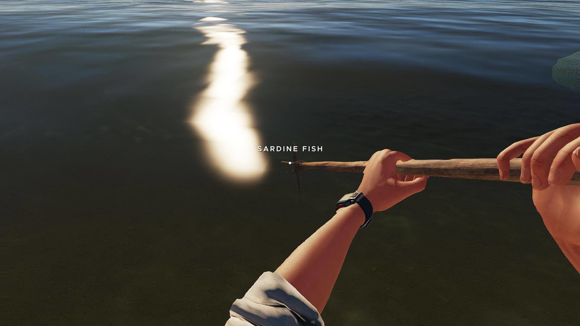 Stranded Deep - Fischen
